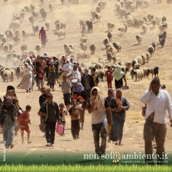 Migranti ambientali in aumento con il riscaldamento globale