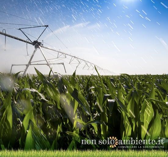 PAC: il futuro delle terre coltivate