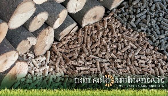 Generatori a biomasse: cala l' ecobonus e si accende il dibattito