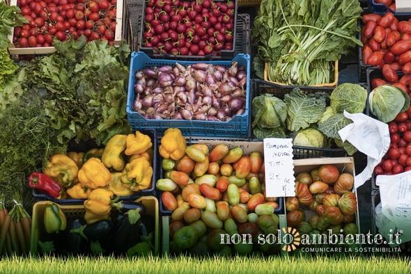 Italiani in salute grazie alla biodiversità (che stiamo perdendo)