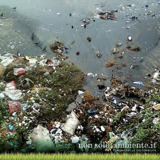 I 5 oggetti di uso quotidiano che rovinano l'ambiente