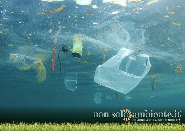Microplastica pericolosa per i pesci: un falso problema?