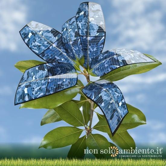 Rinnovabili in crescita record, ma aumentano anche le emissioni di CO2