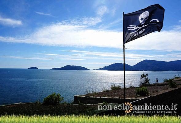 Sea Shepherd e il golfo dei conservazionisti