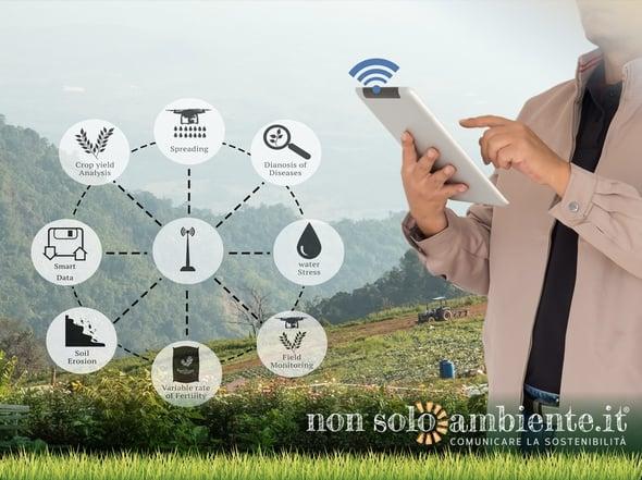 Internet of Things, le potenzialità della Smart Agriculture
