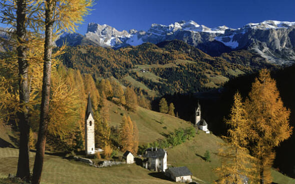 """In Trentino le foreste diventano """"Smart"""""""