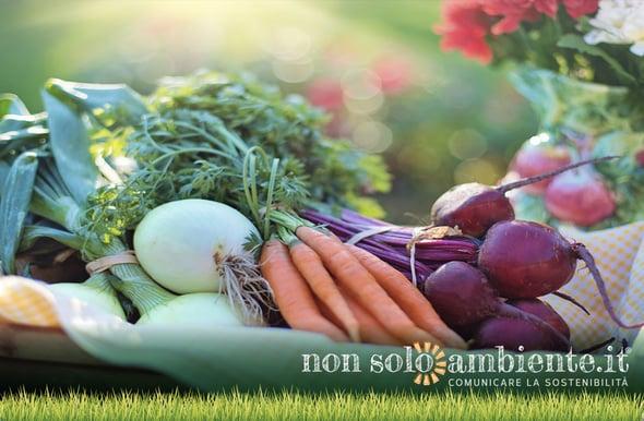 Filiera agroalimentare: la Commissione Europea punta su equità e trasparenza