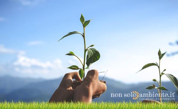 Nasce SDG Action Manager, la piattaforma ONU per la sostenibilità aziendale