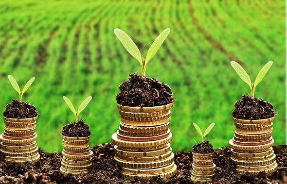 Sviluppo sostenibile grazie a tecnologie efficienti e know how Made in Italy
