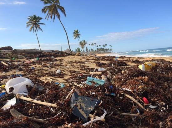 The Guardian: l'UE abbandona la lotta ai crimini ambientali