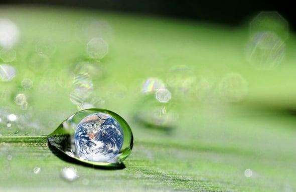 Dal report di sostenibilità al report integrato