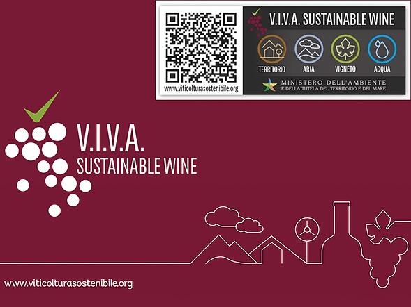 Progetto VIVA Sustanaible Wine, storie di vini in etichetta
