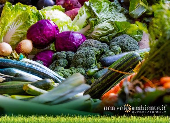 """""""ZeroSprechi"""": il primo hub alimentare per la raccolta di cibo per bisognosi"""