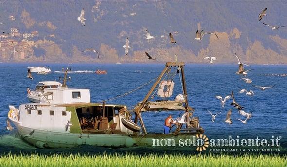 """Progetto """"Arcipelago pulito"""" per un ecosistema migliore"""