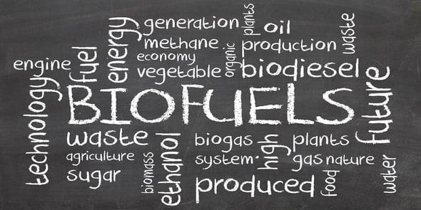 I Biocarburanti: un'opportunità da ampliare per lo sviluppo della green economy italiana
