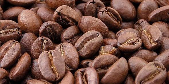 Sostenibilità in tazza: illycaffè si aggiudica il primato di caffè più sostenibile