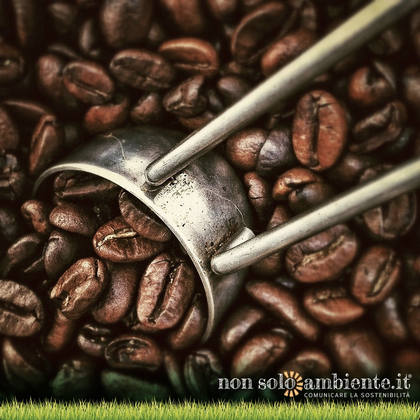 Bere un caffè, un gesto di sostenibilità