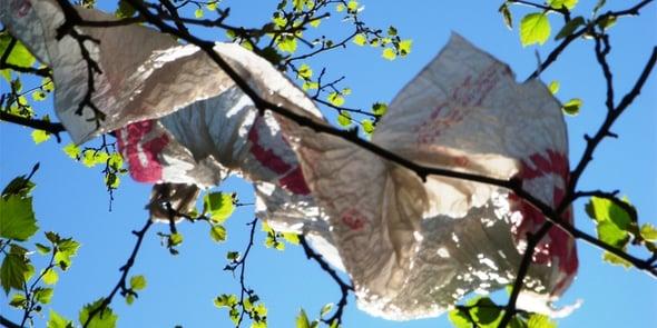 Verso l'addio ai sacchetti di plastica: raggiunto l'accordo in ambito UE