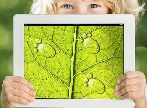 """Per un'educazione """"green"""". Quando l'ecologia parte dall'infanzia"""