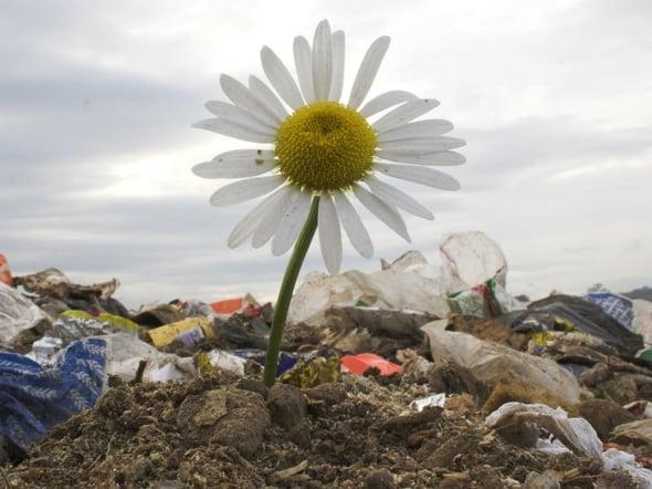 The Guardian: ecco come cambierà il nostro rapporto con i rifiuti entro il 2025