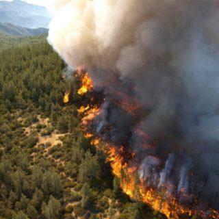 In Campania è allarme incendi: da Coldiretti un decalogo per contrastarli