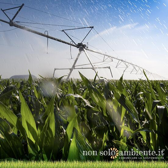 Irrigazione agricola con acque reflue, riforme in arrivo dalla Commissione Europea