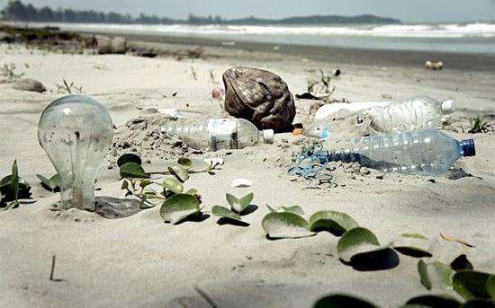 Plastiche biodegradabili: sono veramente ecosostenibili?