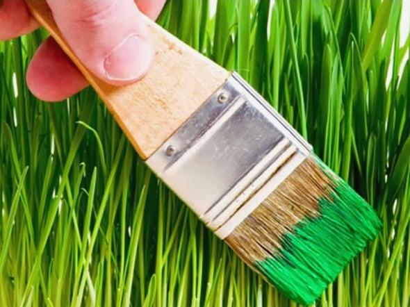 Greenwashing: sette spunti per evitarlo