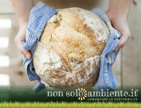Nuovo regolamento per il pane: arriva l'etichetta per distinguere quello fresco