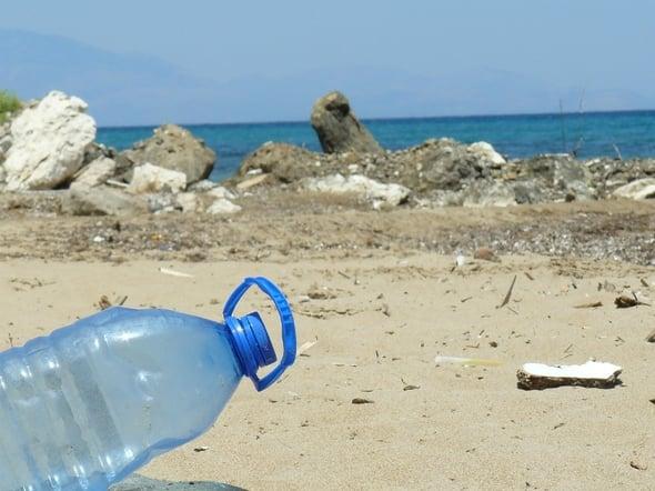 Plastica nei mari... e nei pesci: disastro ambientale irrecuperabile entro il 2050?