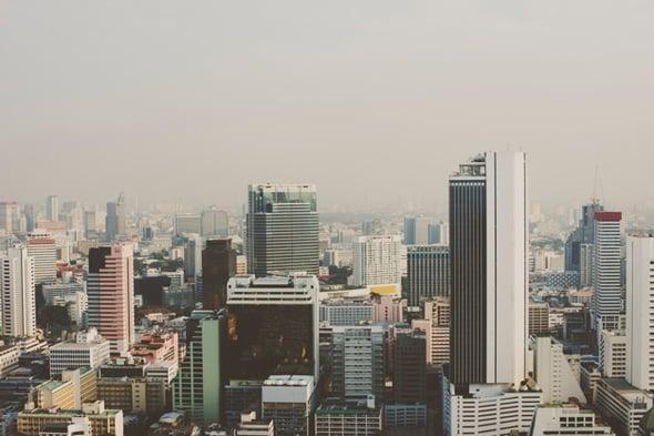 Rispetto per la giungla urbana: le Urban Plant Tags