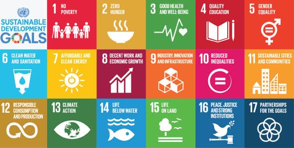 La fotografia dell'Italia secondo i 17 Obiettivi di Sviluppo Sostenibile