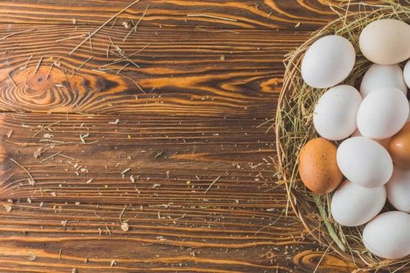 Identikit delle uova biologiche: come conoscerle e riconoscerle
