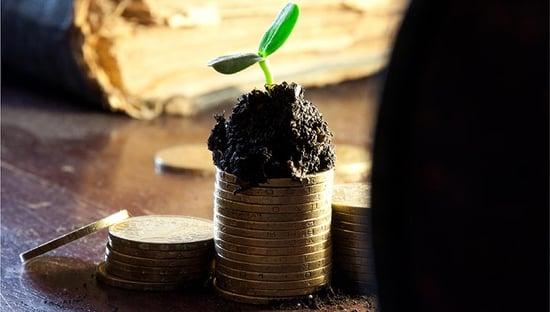 Bioeconomia: in Italia frutta 241 miliardi e 1,6 milioni di occupati