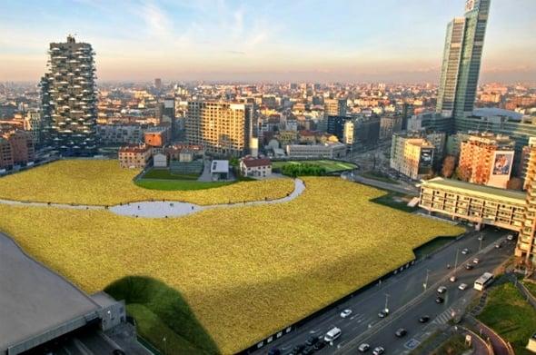 Wheatfield, un campo di grano immerso nello skyline milanese
