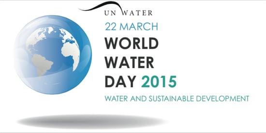 La Giornata Mondiale dell'Acqua 2015: acqua e sviluppo sostenibile