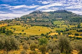 Your Guide to Sicilian Wines Worth Traveling For