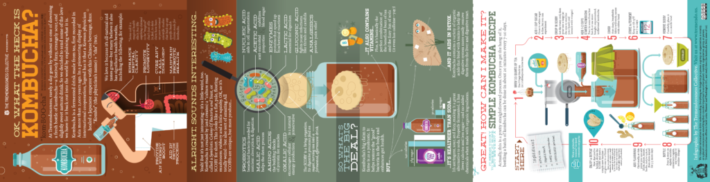 Infographic: OK, so what the heck is kombucha?