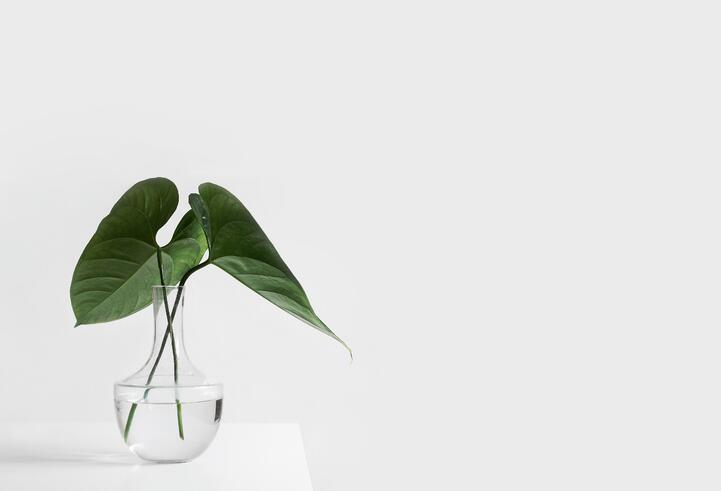 Digital Minimalism: How To Simplify Your Working Life Online
