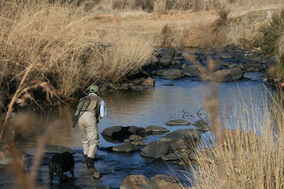Trout fishing Dullstroom