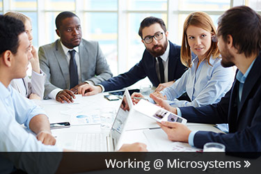 Careers At Microsystems