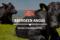 Aberdeen Angus: storia e caratteristiche