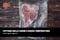 Cottura della carne a bassa temperatura: quali regole seguire?