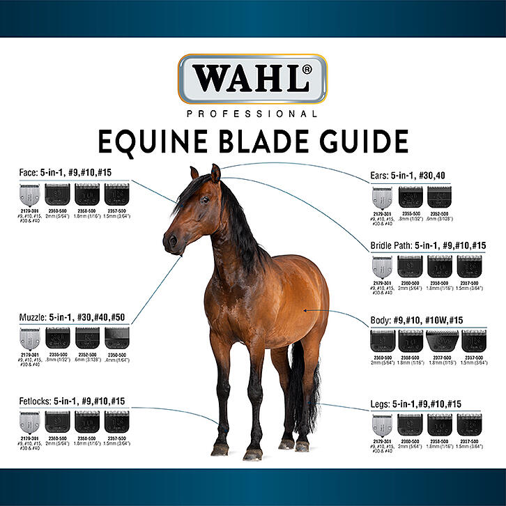 Equine_Blade_Guide_Thumbnail