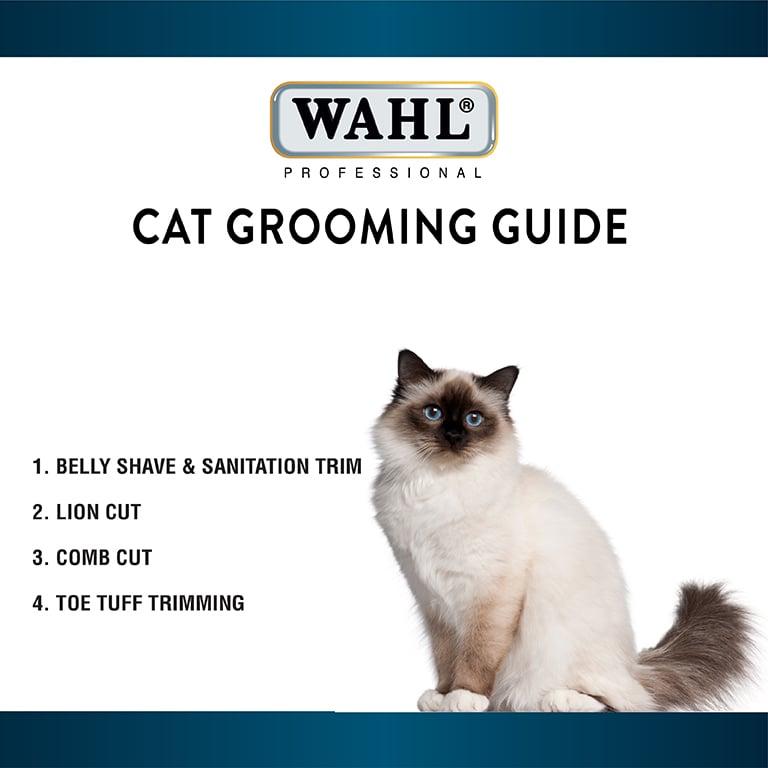 Gat_Grooming_Thumbnail