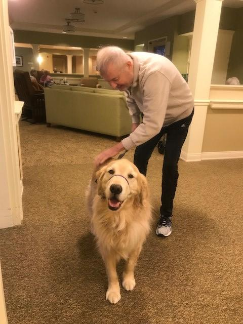 McGee dog therapy alzheimers