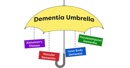 Dementia umbrella-1