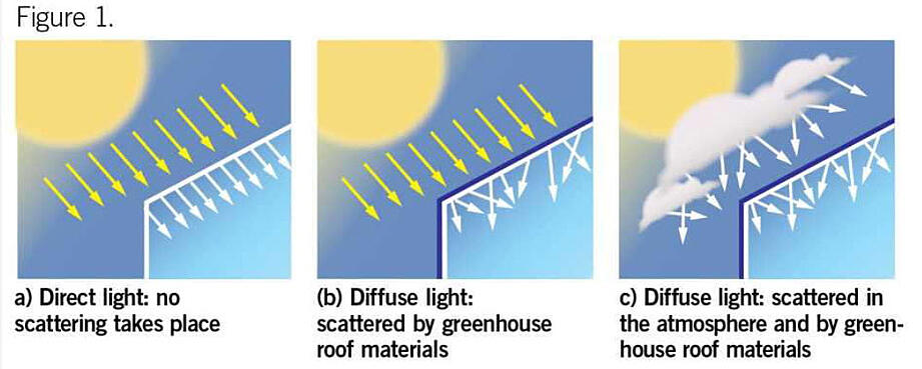 Diffuse light vs direct light SolaWrap Greenhouse Plastic