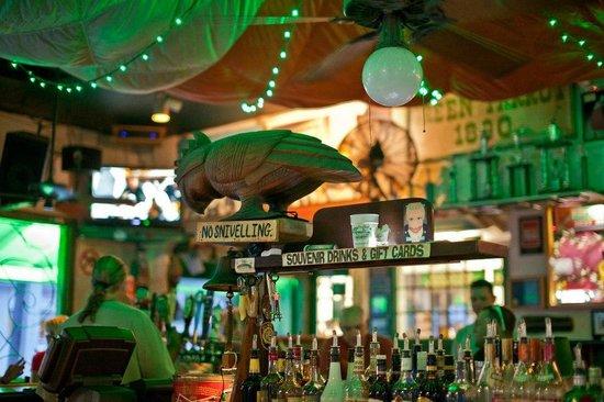 green-parrot-bar