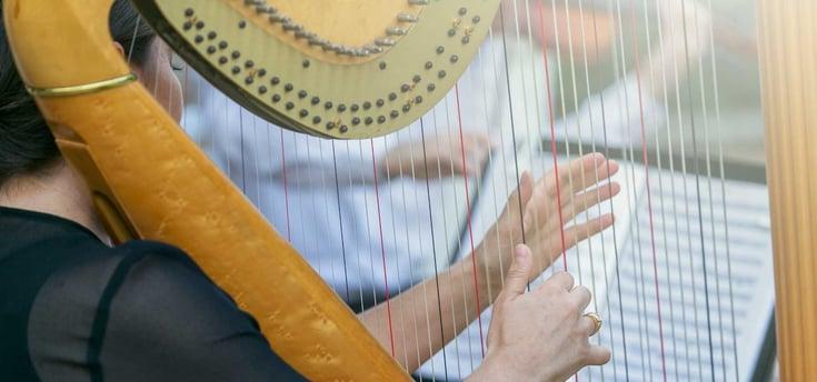 SB_harp